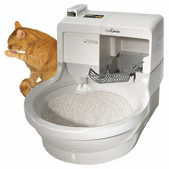 Catgenie Self Flushing Cat Box Reviews