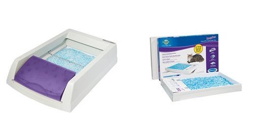 ScoopFree Self-Cleaning Litter Box Reviews